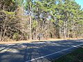 Honey Hill historical marker SC Hwy 336.JPG
