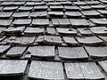 Honeymoon Creek Snow Survey Cabin shingles - Winema NF Oregon.jpg