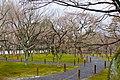 Honmachi 15-chome, Higashiyama Ward, Kyoto, Kyoto Prefecture 605-0981, Japan - panoramio (3).jpg