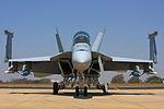 Hornet (5580601055).jpg