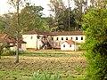 HortoFlorestalRioClaro 4235.jpg