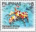 Hymenocera 2010 stamp of the Philippines.jpg