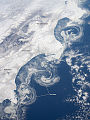 Ice Floes Along the Kamchatka Coastline - NASA Earth Observatory.jpg