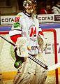 Ilya Sorokin 2013-02-26.jpeg