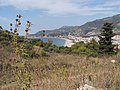 Im ehemaligen Olivenhain über Damlatas - panoramio.jpg
