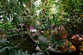 Interior main greenhouse Jardin des Plantes 2013-03-15 n04.jpg