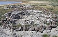 Inuit's camping site near Aajuitsup Tasia (3).JPG