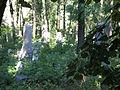 Israelitischer Friedhof Währing Sept 2006 003.jpg