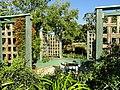 J. C. Raulston Arboretum - DSC06224.JPG
