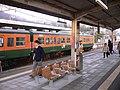 JR岩舟駅 - panoramio.jpg