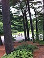 Jamaica Hills - Pond, Boston, MA, USA - panoramio (31).jpg