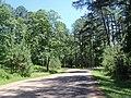 Jamestown, VA 23185, USA - panoramio (8).jpg