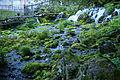 Japan-Hokkaido, Kyogoku, Fukidashi Park 2014 (15348411082).jpg