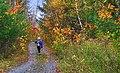 Jeannine Ponton Hains au sentier des couleurs - panoramio.jpg