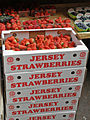 Jersey strawberries.jpg