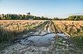 Jersikas pagasts, Latvia - panoramio (31).jpg