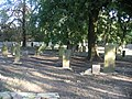 Jewish cemetery in Gdansk - panoramio - Sławek Zawadzki (9).jpg
