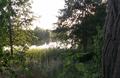 Jezioro Rosnowskie Duże.PNG