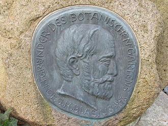 Johann Heinrich Blasius - Relief of Johann Heinrich Blasius in the Botanical Garden Braunschweig