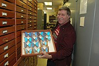 John MacDonald in Mississippi Entomological Museum.jpg