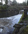 Johnson creek SE 41st weir P2140.jpeg