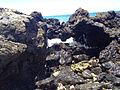 Kahului-Wailuku, HI, HI, USA - panoramio (2).jpg