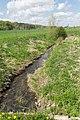 Kalletal - 2015-05-02 - LIP-013 Aberg-Herrengraben (35).jpg