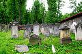 Kamienna Góra, cmentarz żydowski (Aw58)DSCF7749.jpg