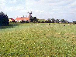 Windmills and yellow brick houses accent the gently rolling meadowlands of Denmark.
