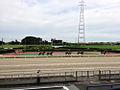 Kasamatsu racecourse paddock.jpg