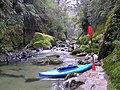 Kayaking up the river at Punakaiki - panoramio.jpg
