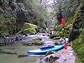 Kayaking up the river at Punakaiki - panoramio.jpg