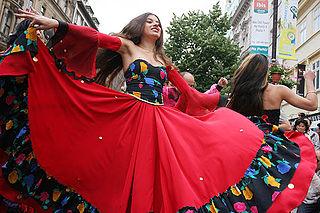 Romani people in the Czech Republic Ethnic group in Czechia