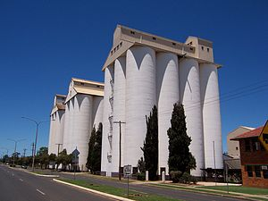 Kingaroy - The peanut silos in Haly Street are the town's tallest structures and most visible landmark.