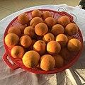 Kozan orange variety 01.jpg