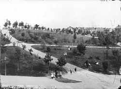 Kronobergsparken.jpg