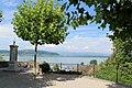 Lac de Morat (6).jpg