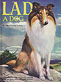 Lad, A Dog (illustrated by William Bartlett, 1957).jpg