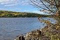 Lake in Autumn (30017156496).jpg