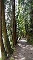 Lakeside trail. - panoramio.jpg