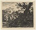 Landschap met boom met blootgelegde wortels, RP-P-OB-12.489.jpg