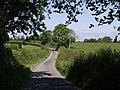 Lane to Wortham - geograph.org.uk - 460217.jpg