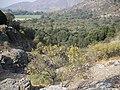 Las Canteras. - panoramio (18).jpg