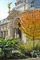 Le jardin intérieur du Petit Palais (Paris) (5136953528).jpg