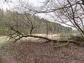 Lentvario sen., Lithuania - panoramio (63).jpg
