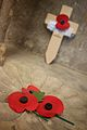 Lest we forget - from Remembrance Sunday.jpg