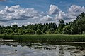 Liebiadziny reserve (Belarus) 08.jpg