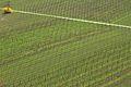 Lines (4507715440).jpg