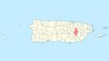 Locator map Puerto Rico Caguas.png