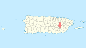Location of Caguas in Puerto Rico